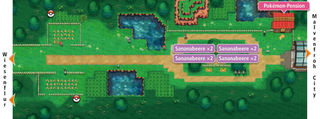 ORAS-Map Route 117.jpg