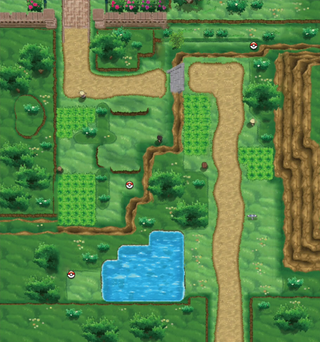 XY Route 3.png