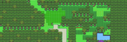 Route 229.png