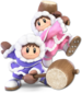 SSB5 Ice Climbers.png