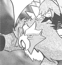 Silbers Entei.png