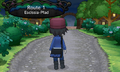 XY Route 1 betreten.png