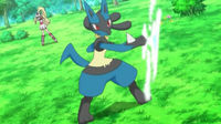 Connies Lucario.jpg