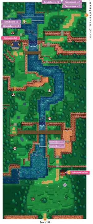 ORAS-Map Route 119.jpg