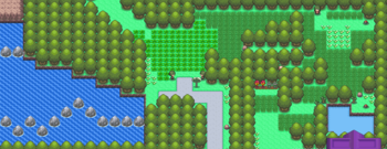 Route 229 DP.png