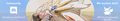 Banner-Lilly und Solgaleo.png