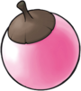 Aprikoko Pink Artwork.png